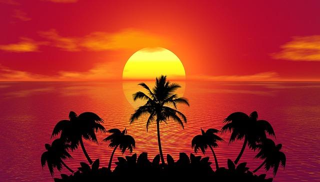 západ slunce za palmami.jpg