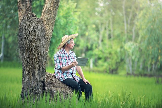 stařík u stromu