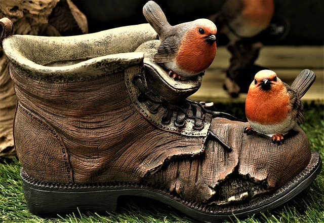 ptáčci na botě